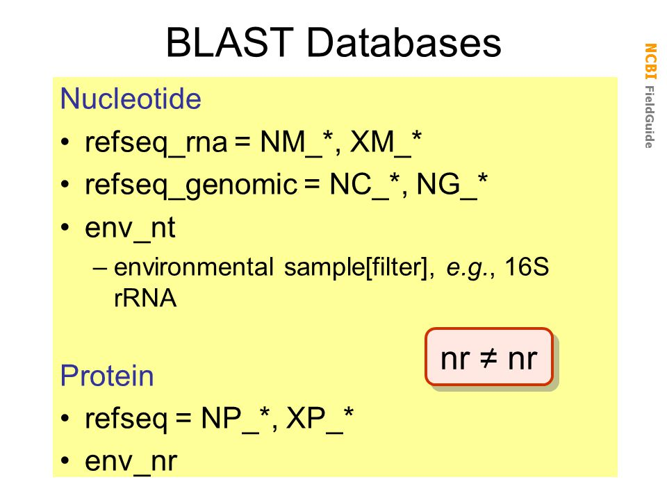 BLAST Databases nr = nr Nucleotide refseq_rna = NM_*, XM_*