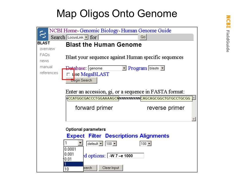 Map Oligos Onto Genome forward primer reverse primer -W 7 –e 1000