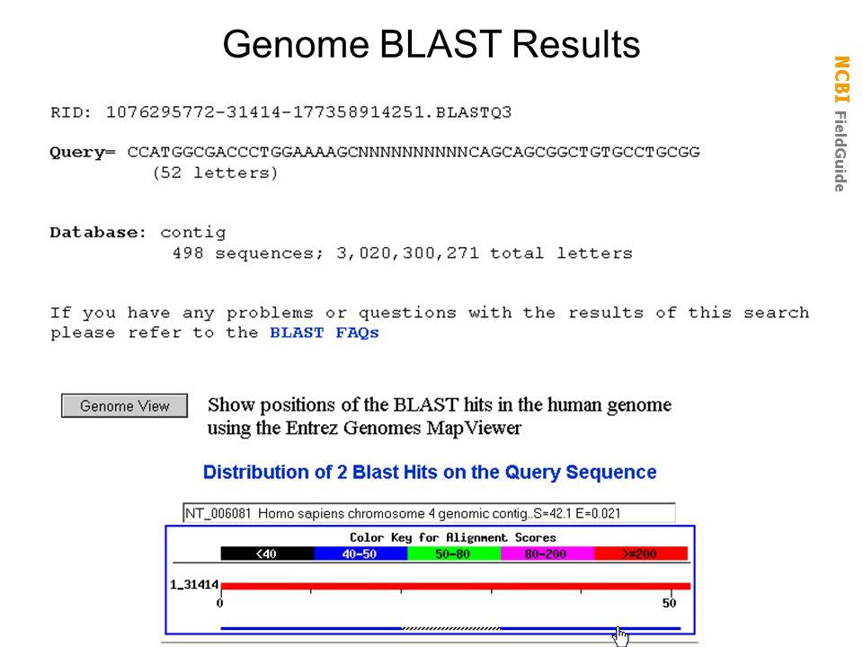 Genome BLAST Results