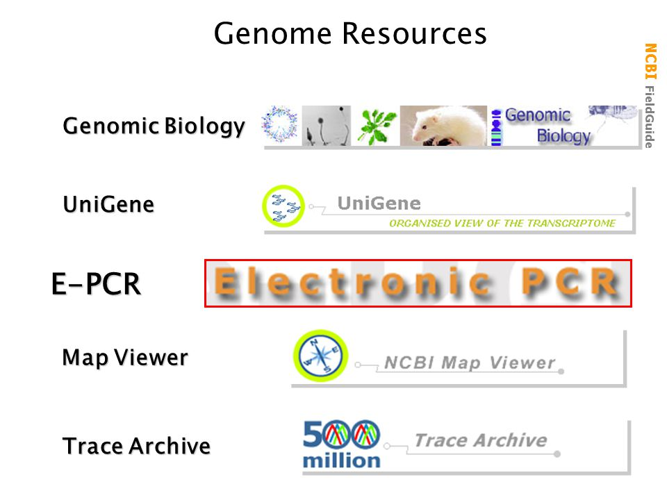 Genome Resources E-PCR Genomic Biology UniGene Map Viewer