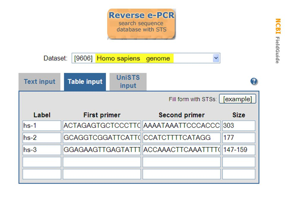 reverse e-pcr