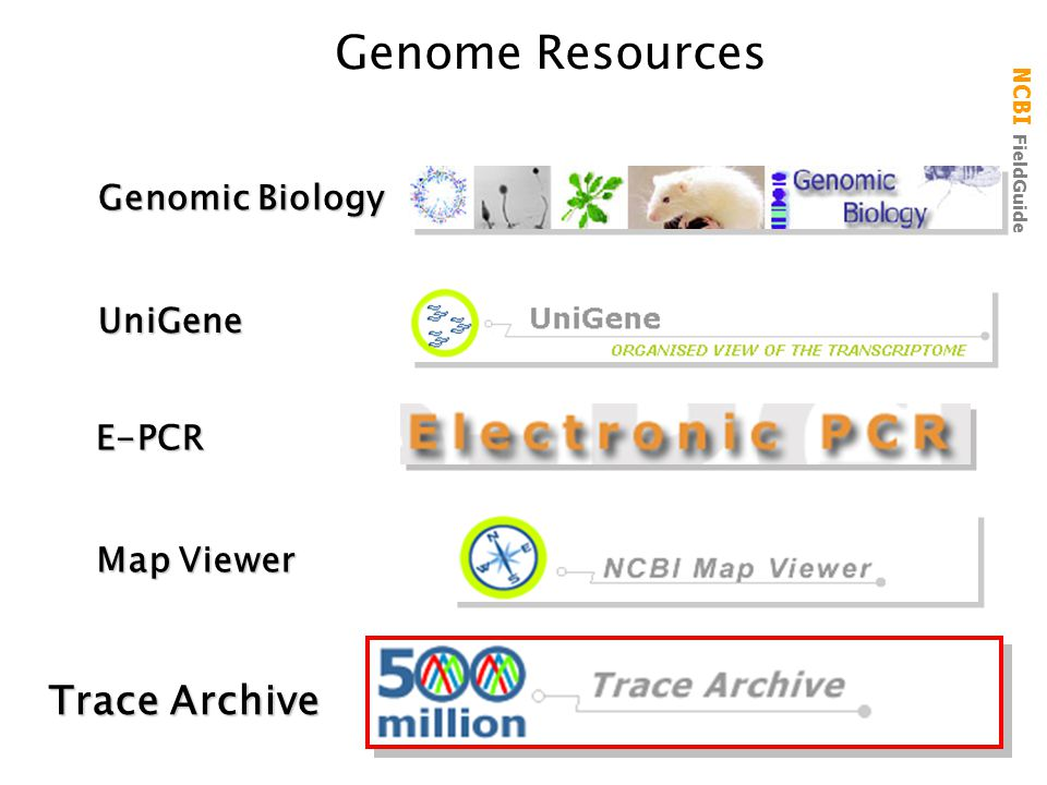 Genome Resources Trace Archive Genomic Biology UniGene E-PCR