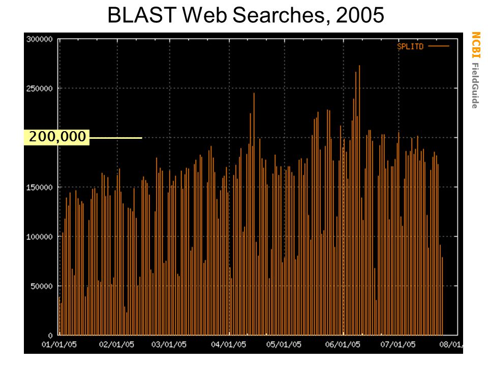 BLAST Web Searches, 2005 200,000