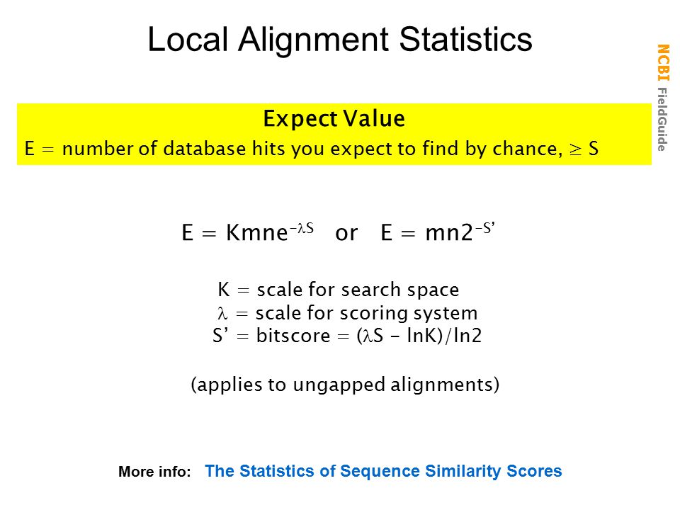 Local Alignment Statistics