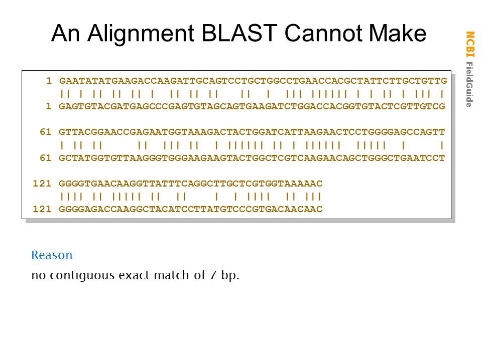 An Alignment BLAST Cannot Make
