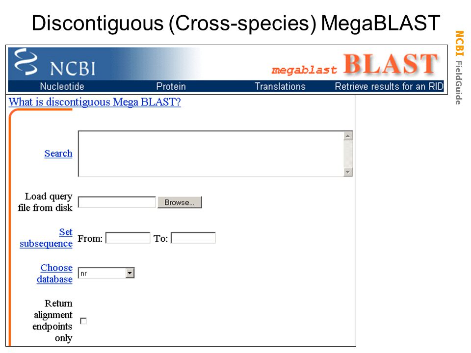 Discontiguous (Cross-species) MegaBLAST
