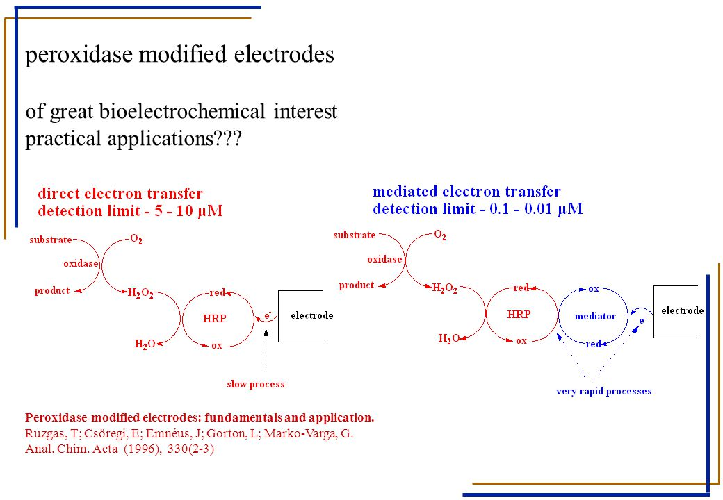 peroxidase modified electrodes of great bioelectrochemical interest practical applications