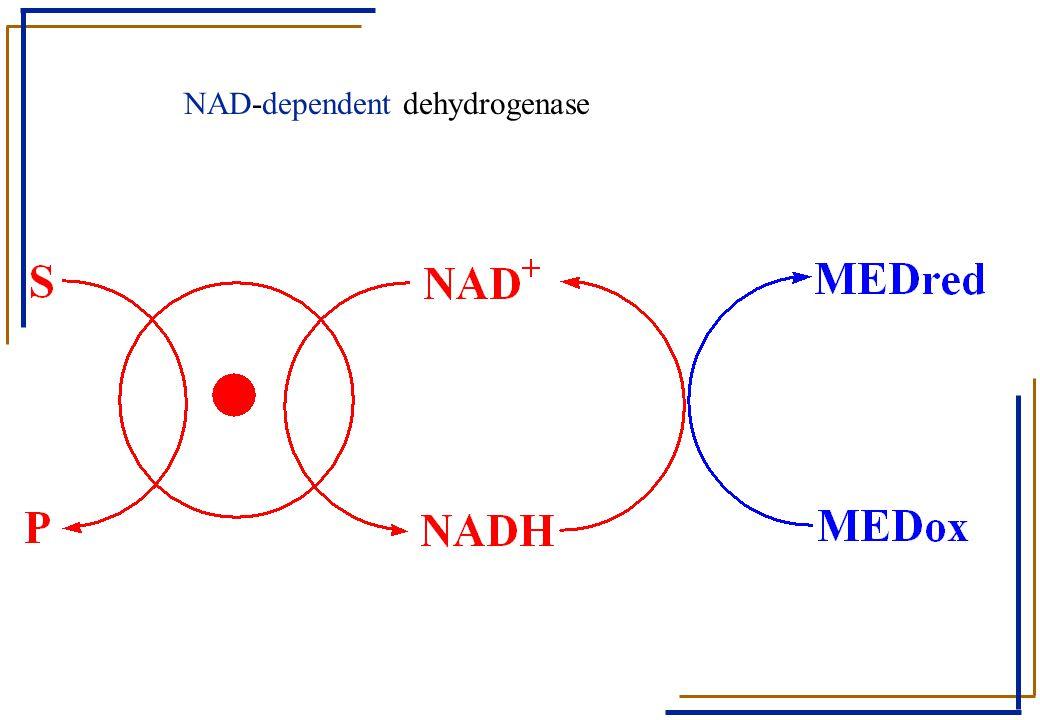 NAD-dependent dehydrogenase