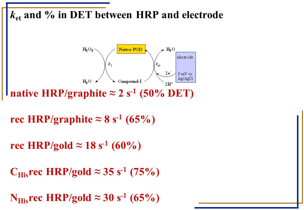 ket and % in DET between HRP and electrode native HRP/graphite ≈ 2 s-1 (50% DET) rec HRP/graphite ≈ 8 s-1 (65%) rec HRP/gold ≈ 18 s-1 (60%) CHisrec HRP/gold ≈ 35 s-1 (75%) NHisrec HRP/gold ≈ 30 s-1 (65%)