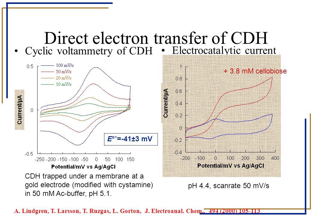 Direct electron transfer of CDH