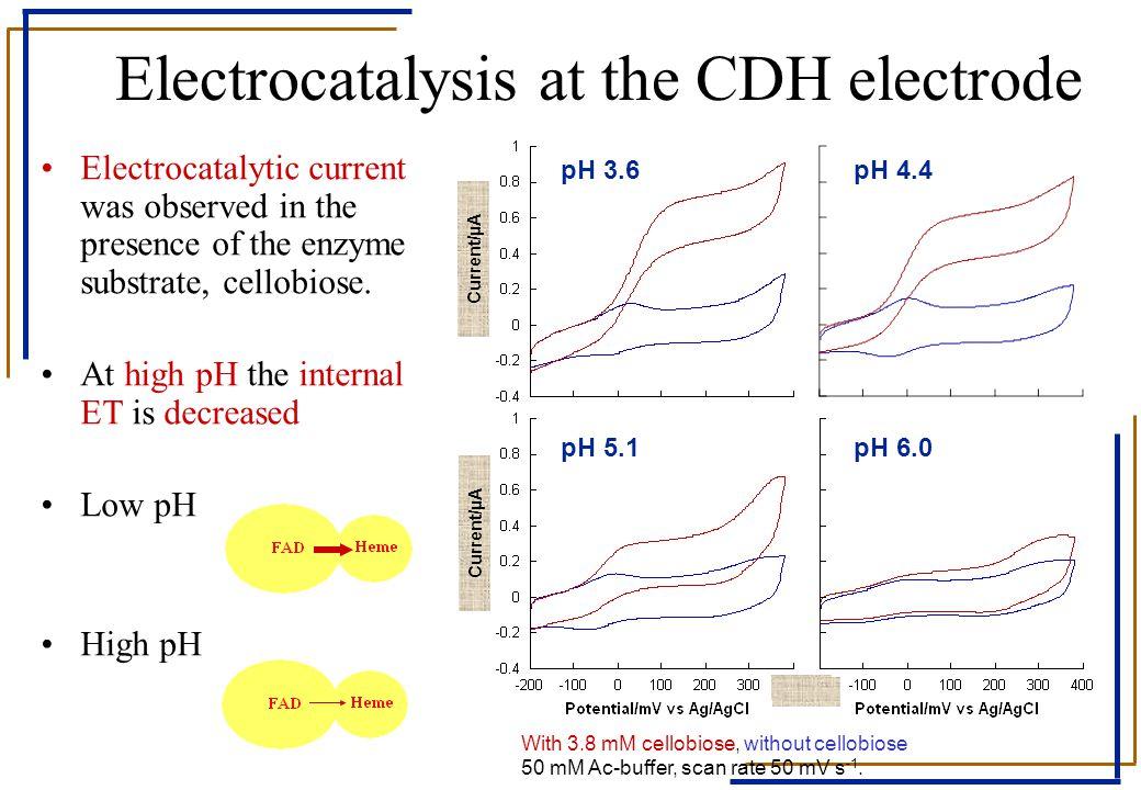 Electrocatalysis at the CDH electrode