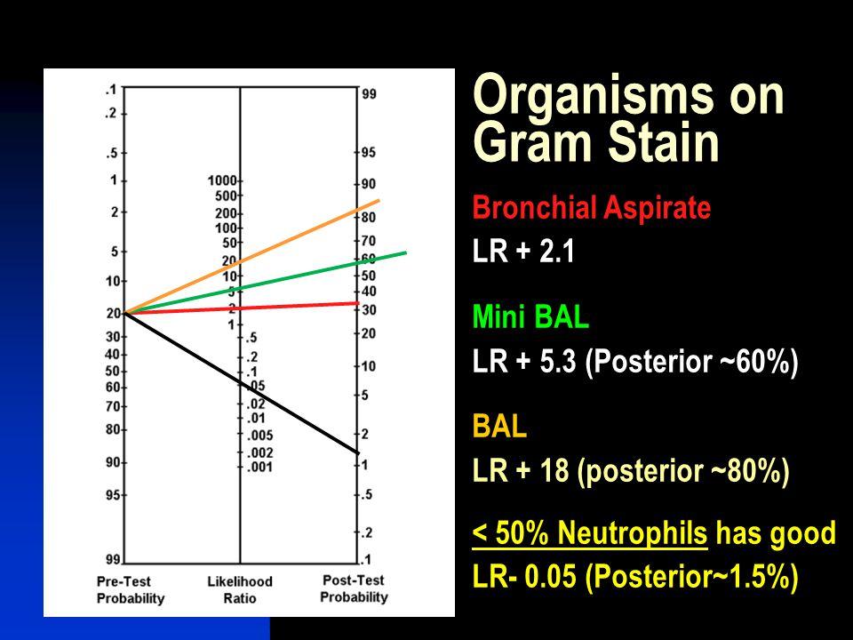 Organisms on Gram Stain
