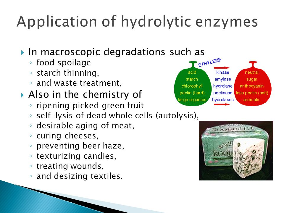 Application of hydrolytic enzymes
