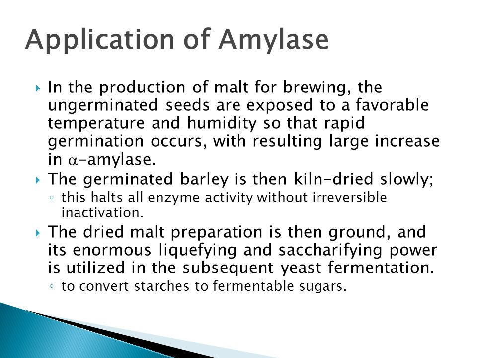 Application of Amylase