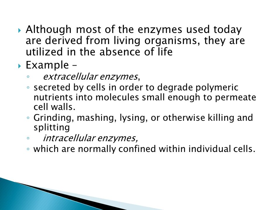 Although most of the enzymes used today are derived from living organisms, they are utilized in the absence of life