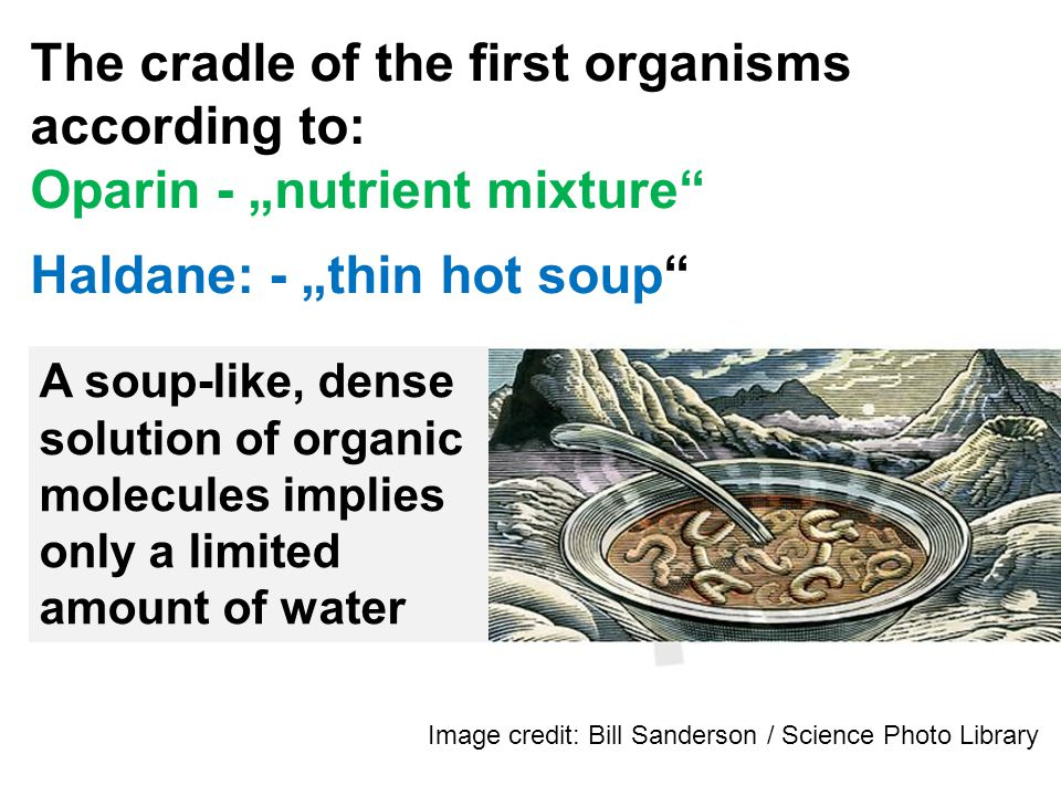 The cradle of the first organisms according to: