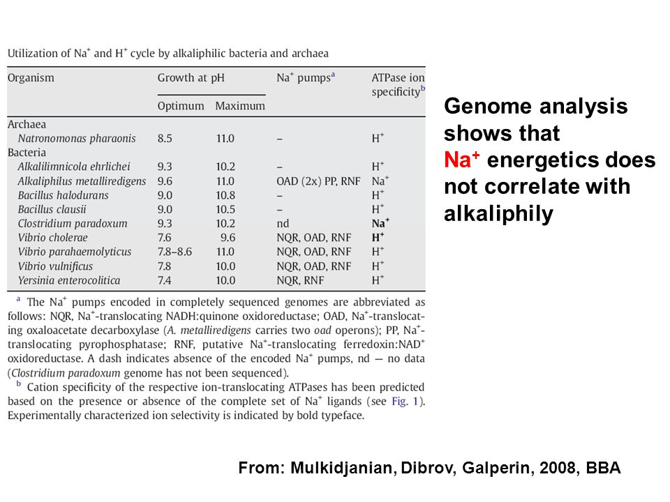 Genome analysis shows that Na+ energetics does not correlate with alkaliphily