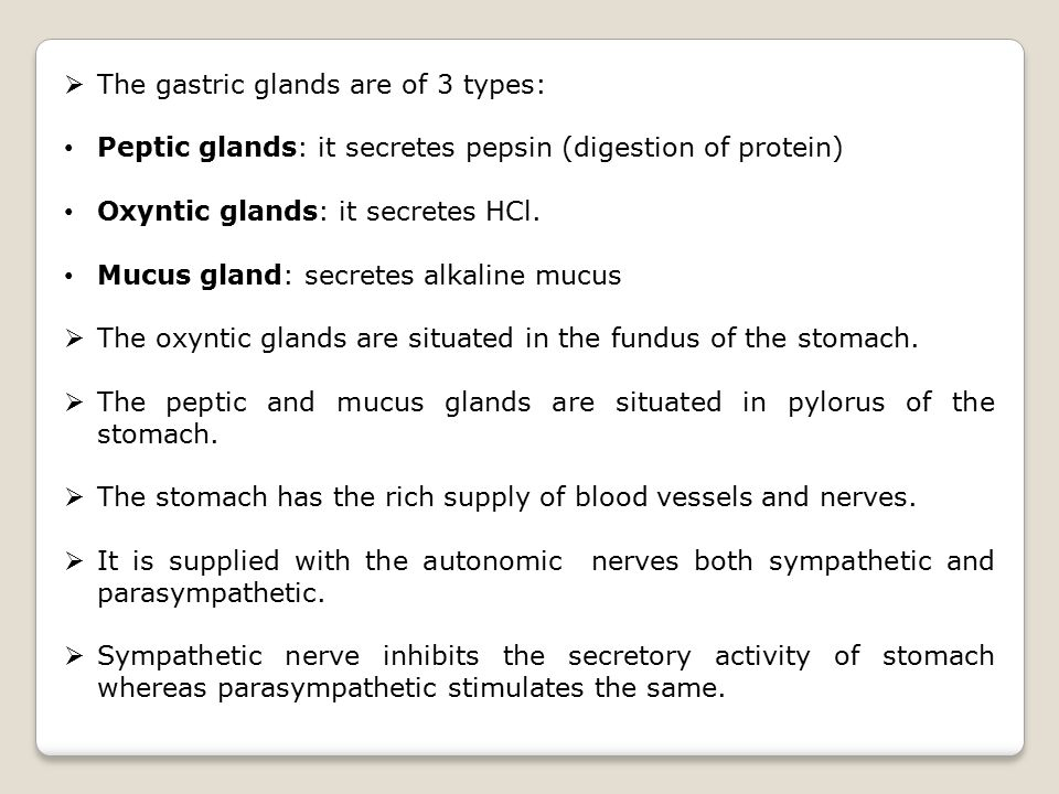 The gastric glands are of 3 types:
