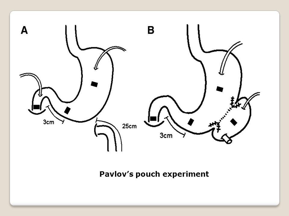 Pavlov's pouch experiment