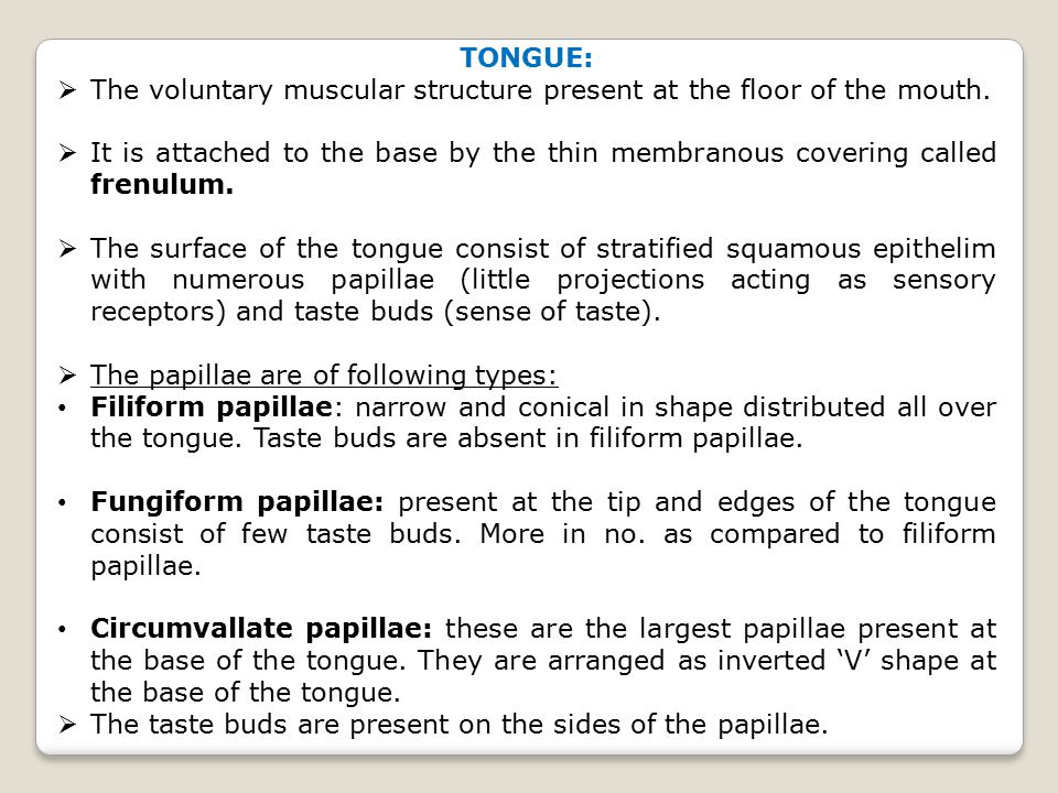TONGUE: The voluntary muscular structure present at the floor of the mouth.