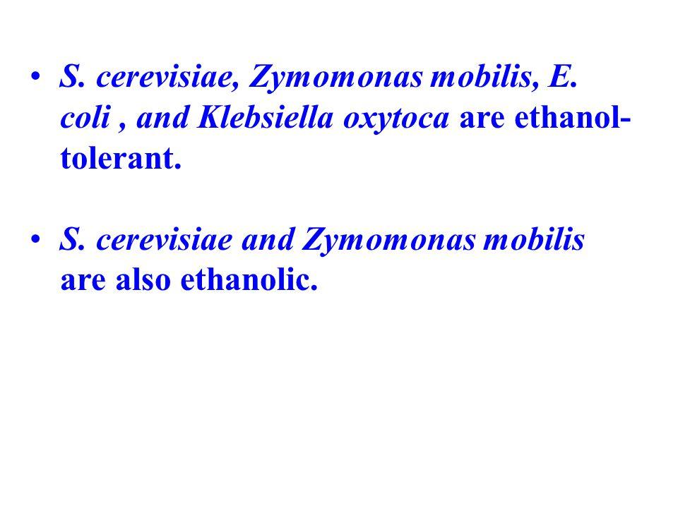 S. cerevisiae, Zymomonas mobilis, E