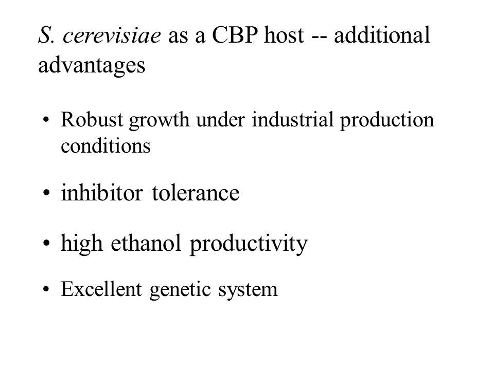 S. cerevisiae as a CBP host -- additional advantages