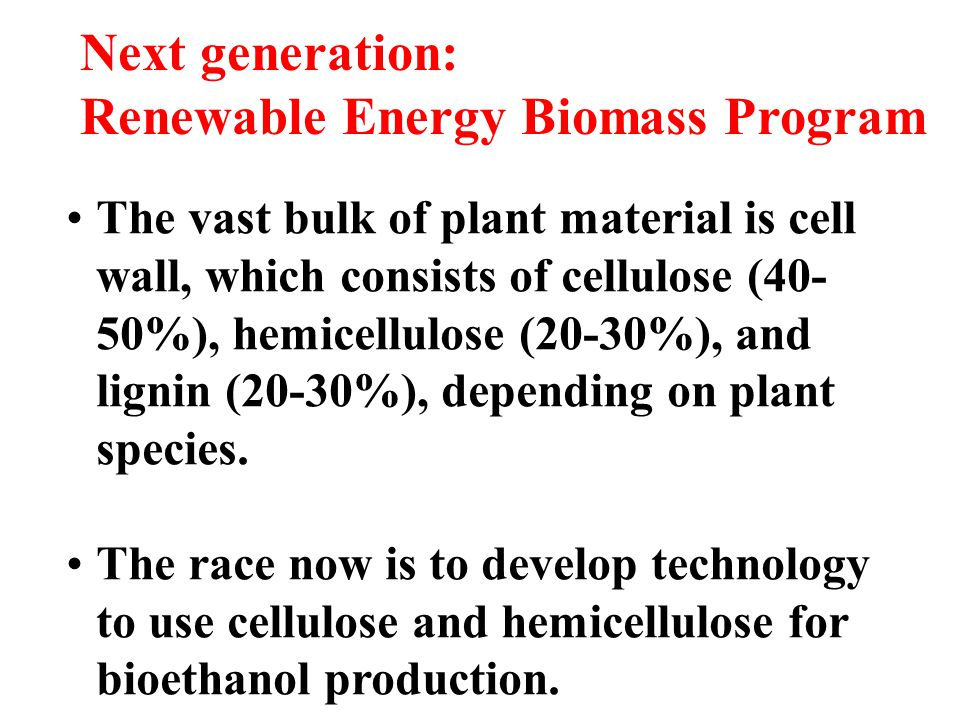 Renewable Energy Biomass Program