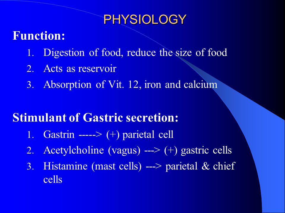 Stimulant of Gastric secretion: