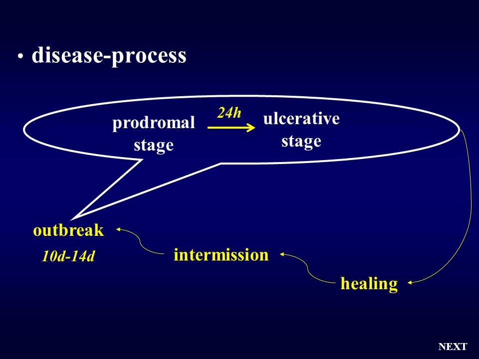 disease-process ulcerative stage prodromal stage outbreak intermission