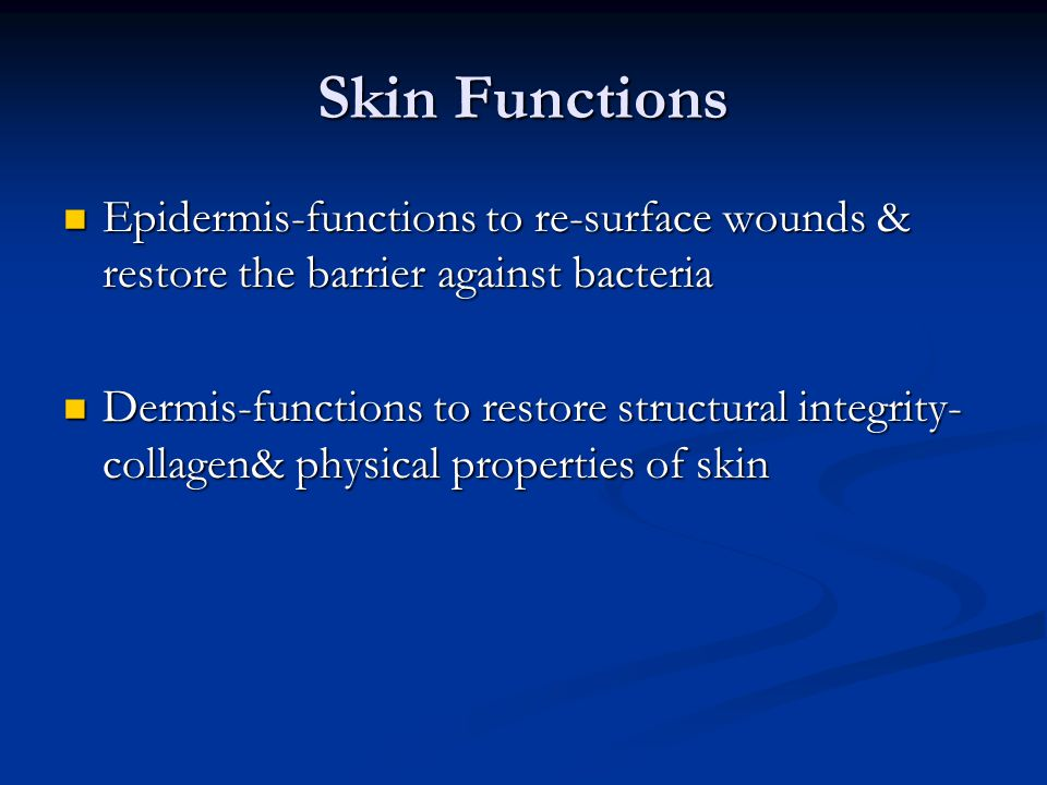 Skin Functions Epidermis-functions to re-surface wounds & restore the barrier against bacteria.