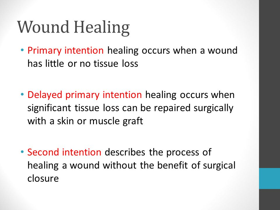 Wound Healing Primary intention healing occurs when a wound has little or no tissue loss.