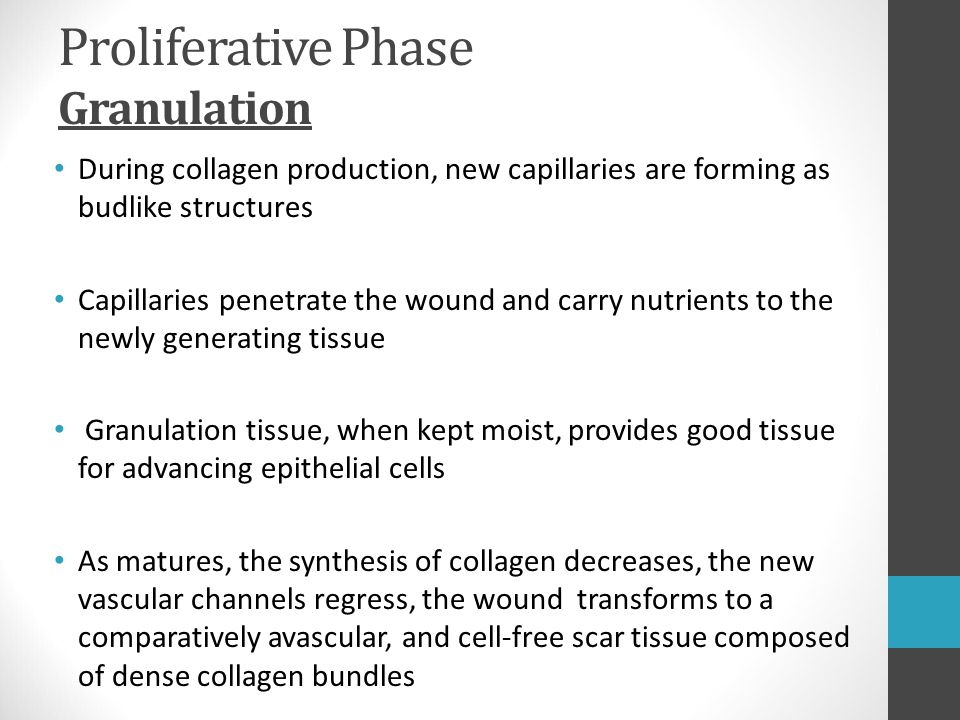 Proliferative Phase Granulation