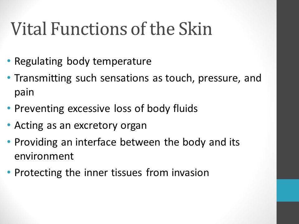 Vital Functions of the Skin