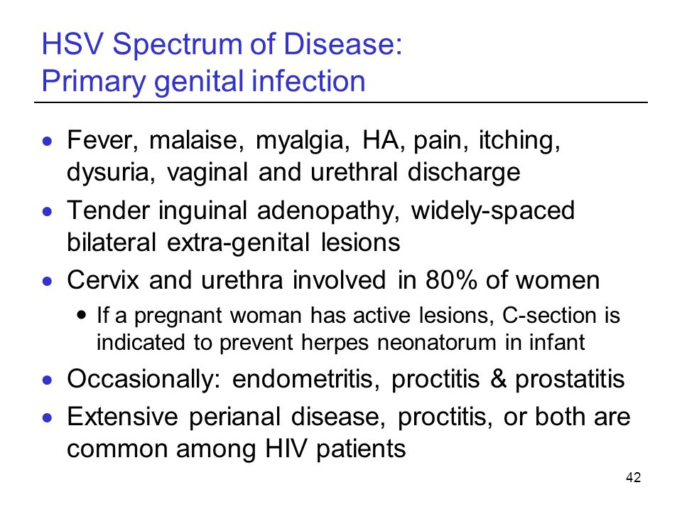 HSV Spectrum of Disease: Primary genital infection