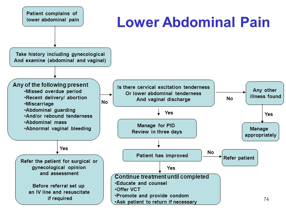 Lower Abdominal Pain Any of the following present