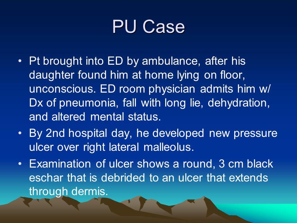 PU Case