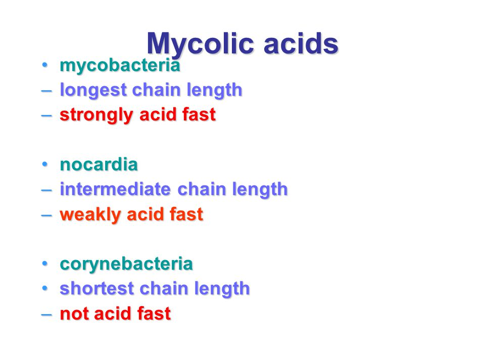 Mycolic acids mycobacteria longest chain length strongly acid fast