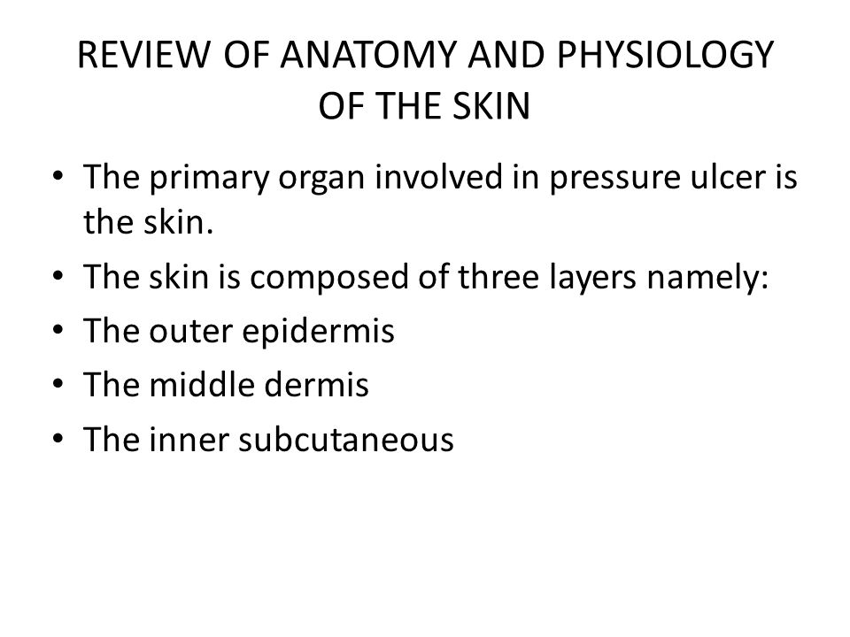 REVIEW OF ANATOMY AND PHYSIOLOGY OF THE SKIN