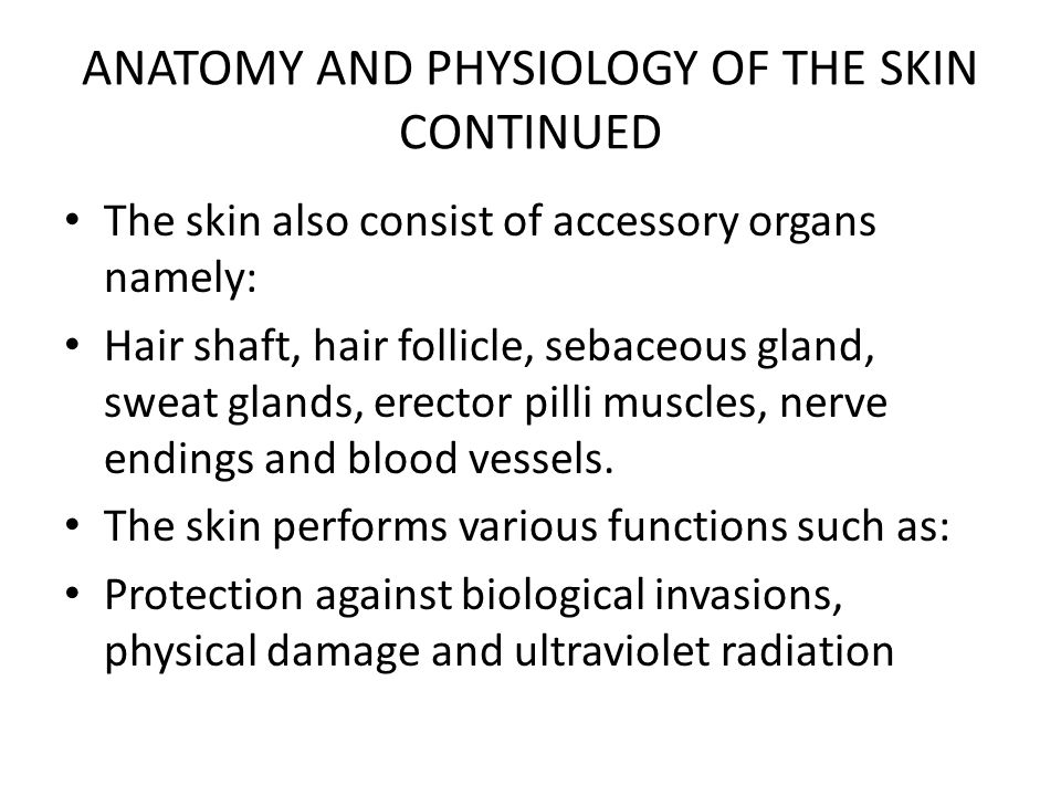 ANATOMY AND PHYSIOLOGY OF THE SKIN CONTINUED