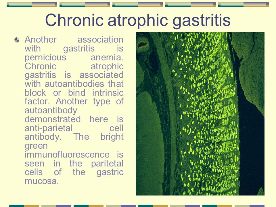 Chronic atrophic gastritis