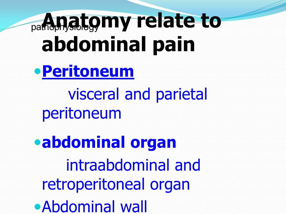 Anatomy relate to abdominal pain