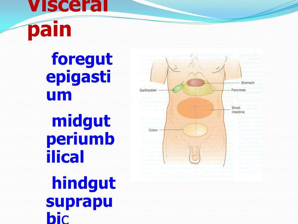 Visceral pain foregut epigastium midgut periumbilical