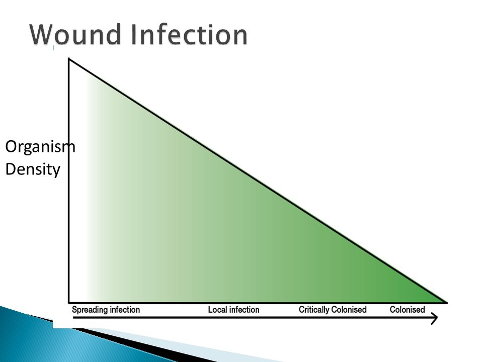 Wound Infection Organism Density