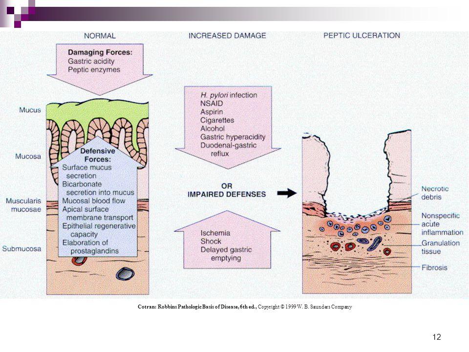 Cotran: Robbins Pathologic Basis of Disease, 6th ed