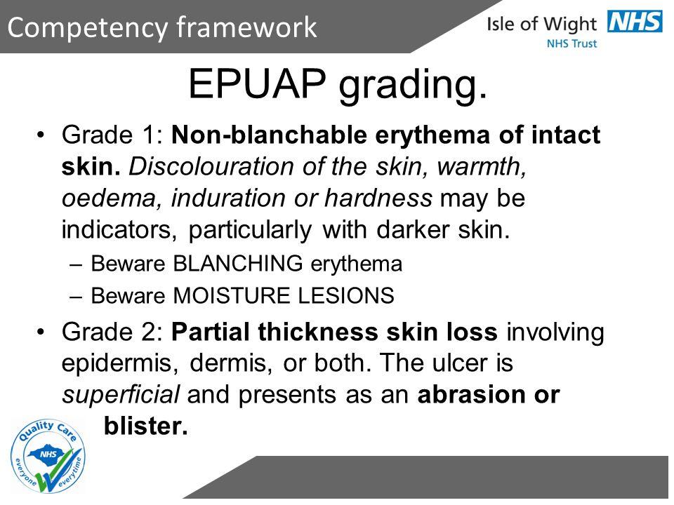 EPUAP grading. Competency framework