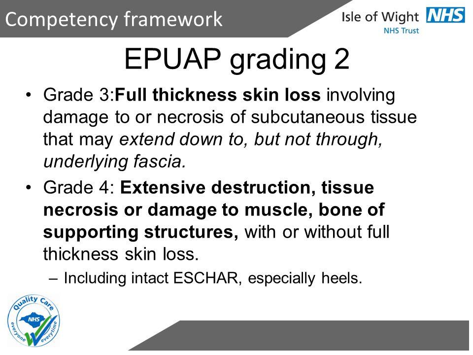 EPUAP grading 2 Competency framework