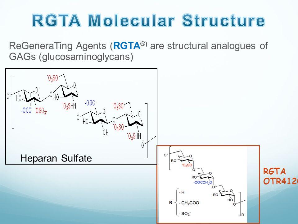 RGTA Molecular Structure