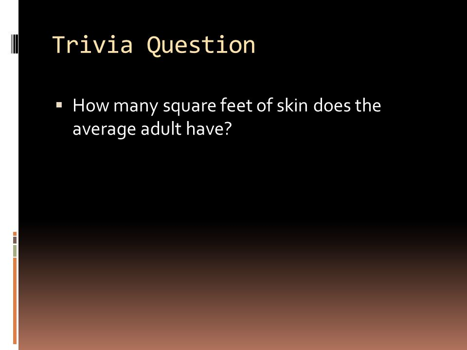 Trivia Question How many square feet of skin does the average adult have