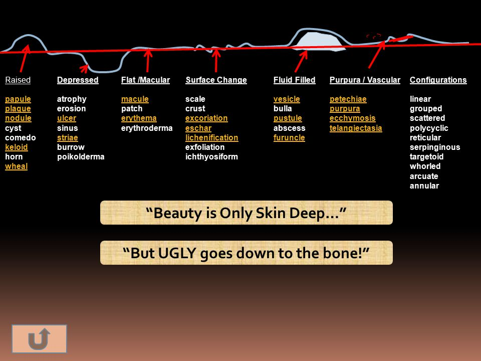 Beauty is Only Skin Deep… But UGLY goes down to the bone!