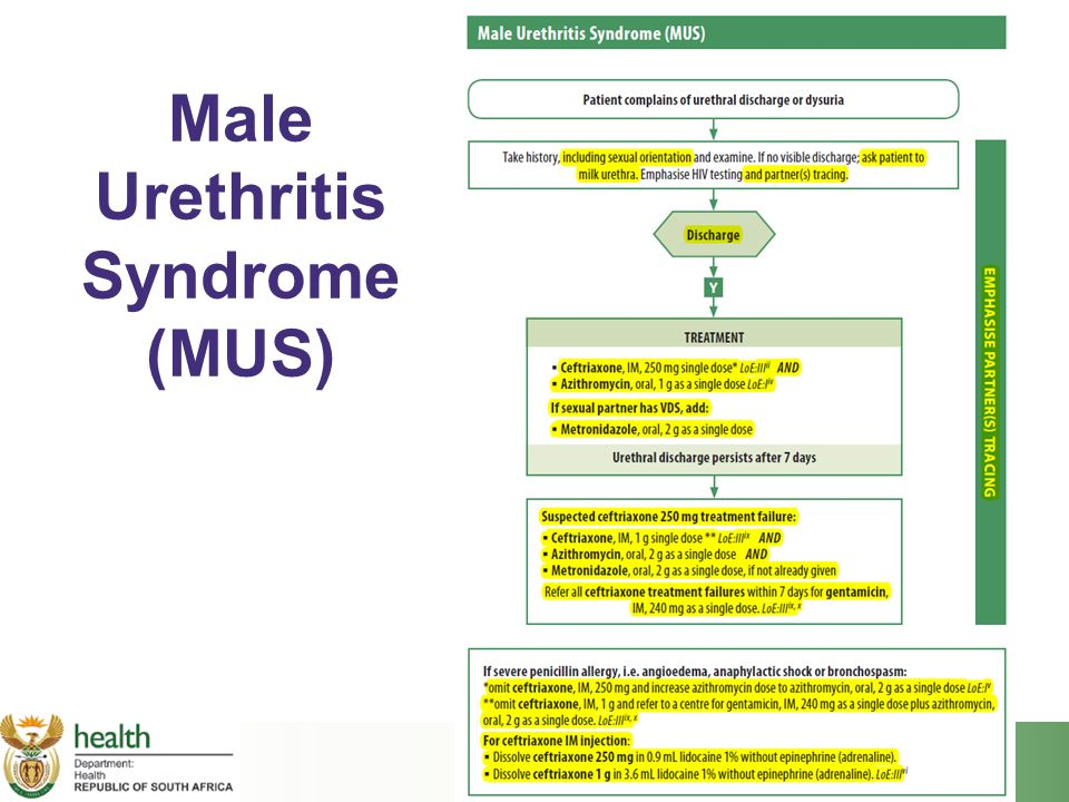 Male Urethritis Syndrome (MUS)